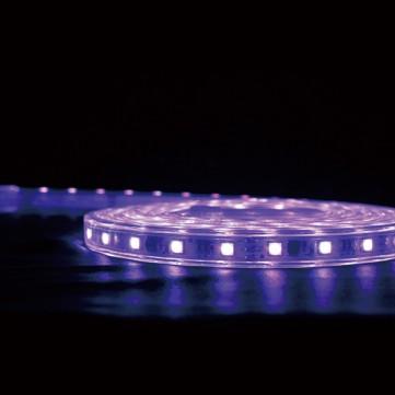 シューティングロープライトRGB 500
